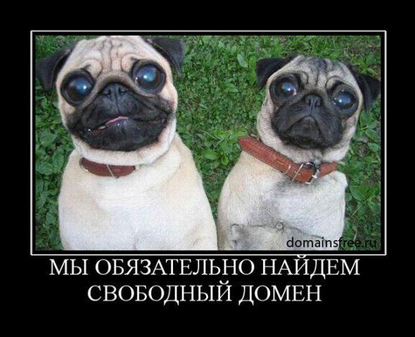 serious2